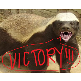 Honey Badgers In This Pitch